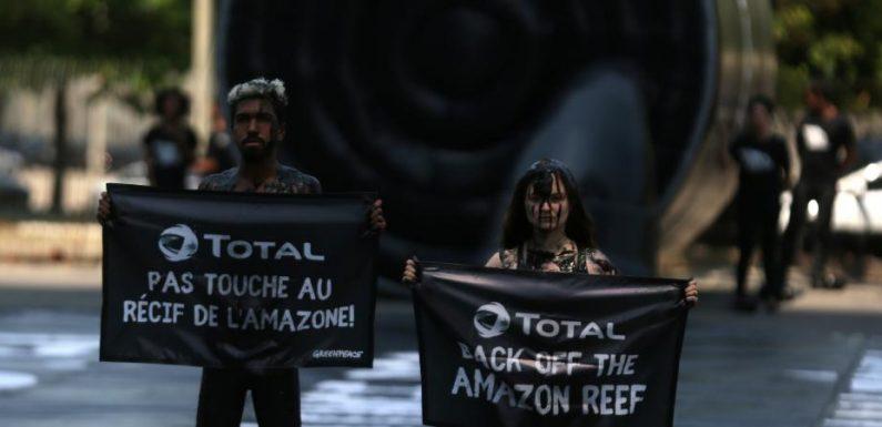 TRIBUNE. «Le gouvernement tourne le dos à la science» : des ONG environnementales demandent l'arrêt des forages de Total en Guyane