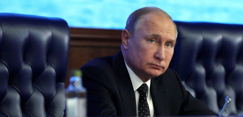 Surprises, humour noir et formules étranges : le best-of des conférences de presse de Poutine