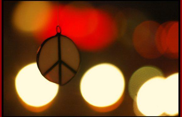 Protester en politique : 198 méthodes d'action non violente