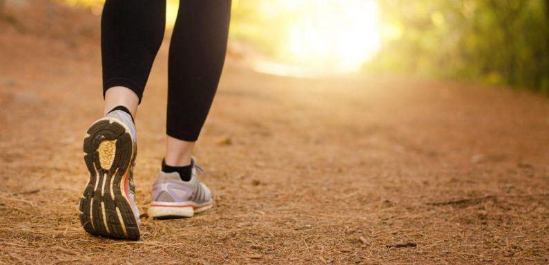 Maladie d'Alzheimer : faire du sport aiderait à réduire les risques