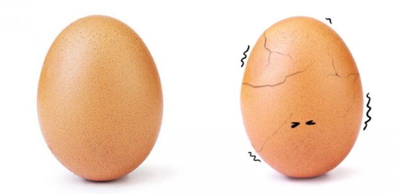 L'œuf star d'Instagram vient d'éclore et ce qui se cache derrière est beaucoup plus important qu'il n'y paraît