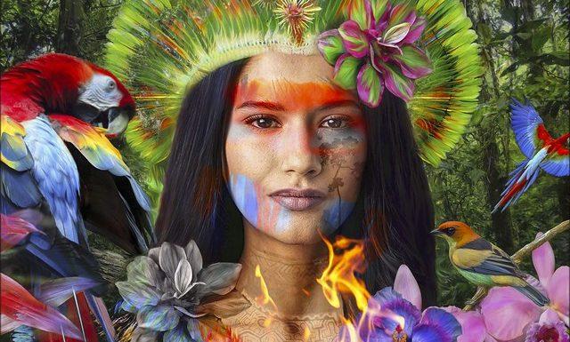 Amazonie : fake news, désinformation, manipulation !