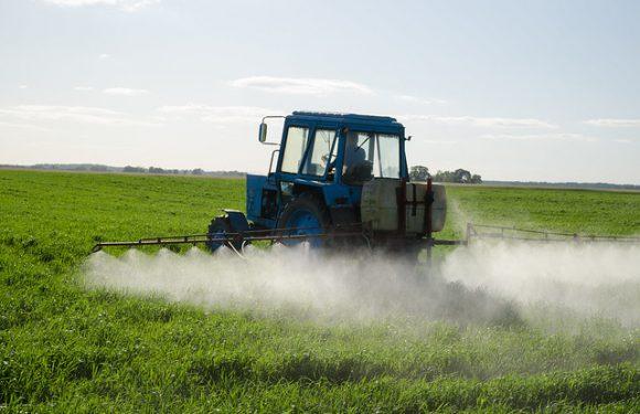 Interdiction des produits phytosanitaires : le triomphe du clientélisme ?
