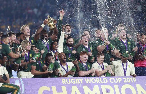 Coupe du monde de rugby : Comment les Springboks sont revenus au sommet