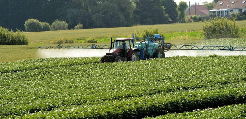 Pesticides : Bayer et BASF condamnés à verser 244 millions d'euros à un agriculteur